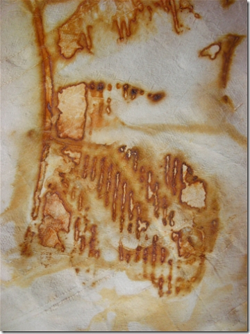 detail of rust dyed fabric