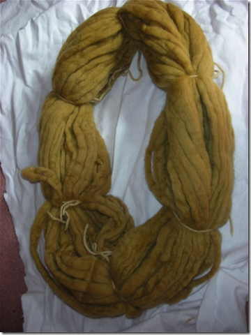 yarn dyed with blackberry leaves