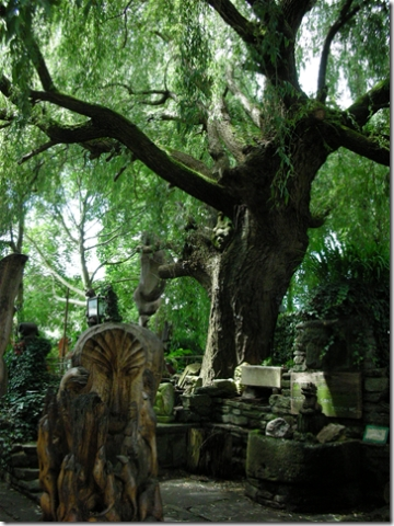 old, knarled tree and sculptures