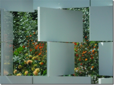 garden with 'frames' in front