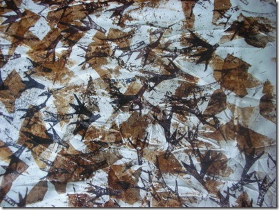 bird prints and mud fabric