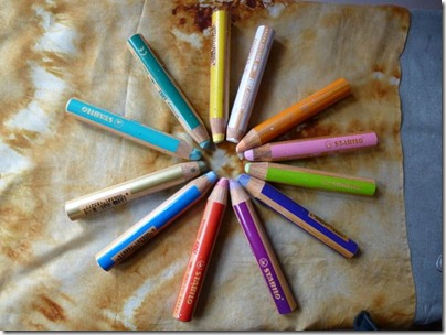 12 fat woody stabilo crayons